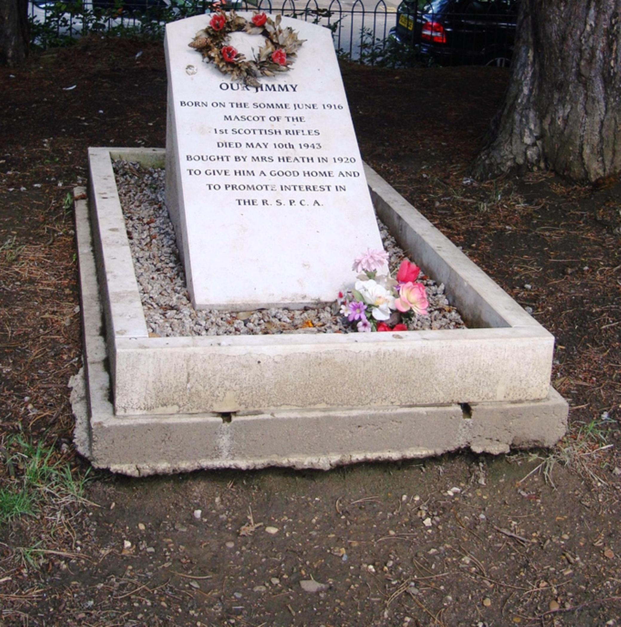 Jimmy the Donkey's gravestone
